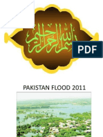Pakistan Flood 2011A