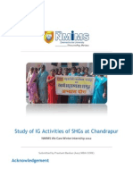 Study of Income Generation Activities of SHGs at Chandrapur_old