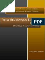 Virus Respiratorio Sincital Bovino