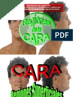 Regiones de La Cara
