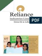 Corporate Governance Report-reliance