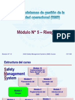 Sms m05 Riesgos 08-11 (Ps)