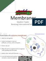24-membranes-1224991827782369-8 (2)