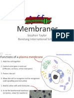 24-membranes