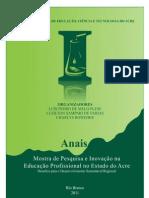 anais_e-book_05.03.2012