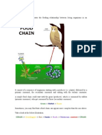 F2 Chap 4 Food Chain