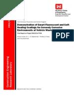 Fluorescent Coating Report