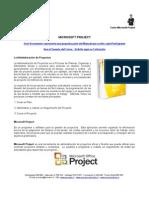 CEI 303 - Microsoft Project
