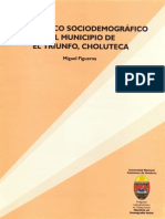 Diagnóstico Sociodemográfico El Triunfo, Choluteca