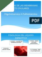 Anomalias de Las Membranas Feto Ovulares- Practica