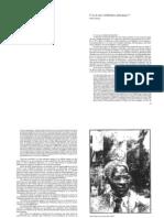 Aimée Cesaire - Y-a-t-il une civilisation africaine¿