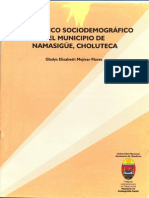 Diagnostico Sociodemografico Namasigue Choluteca