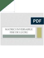 matrici_inversabile
