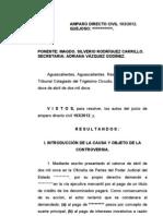 Sentencia Amparo directo 193-2012