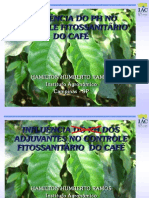 Adjuvant Es Cafe