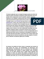 La Polinizacion en Las Flores 1
