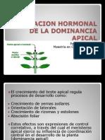 REGULACION HORMONAL DE LA DOMINANCIA APICAL
