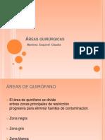 Areas Quirurgicas