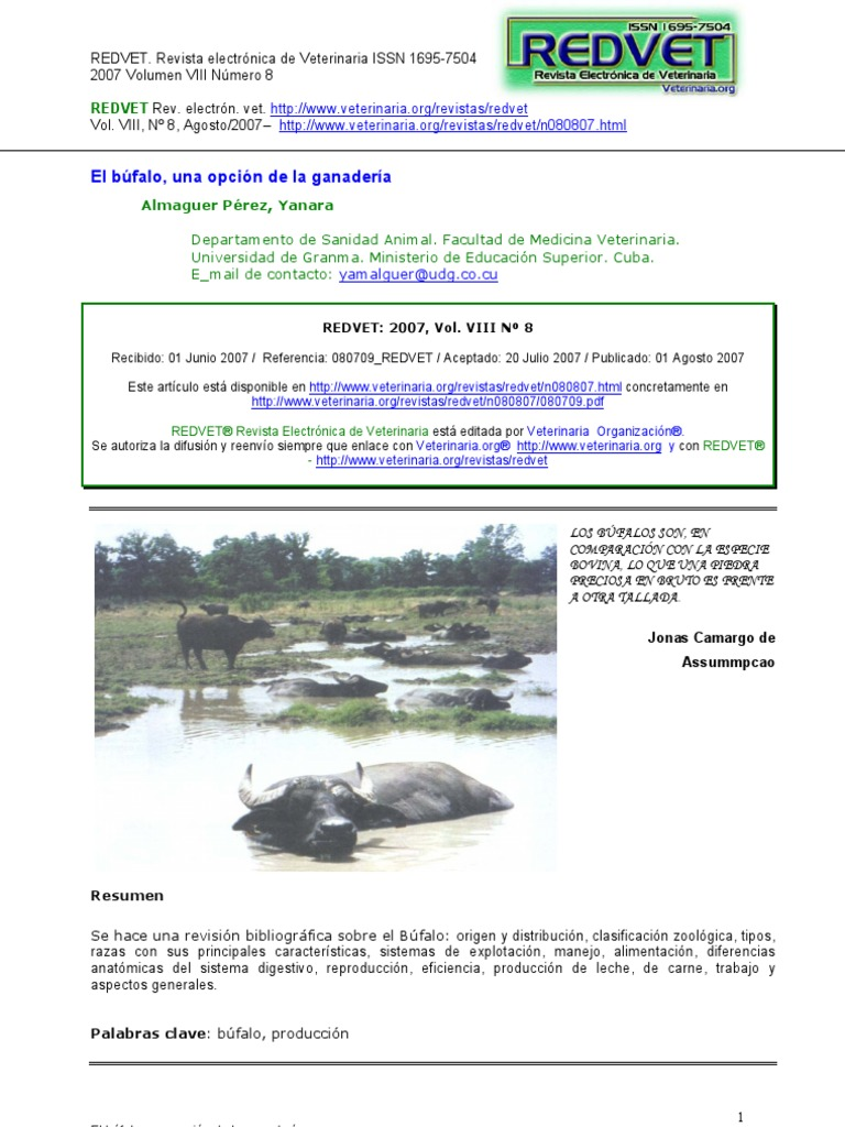 Bufalo s