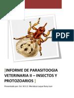 Informe de Parasito 2 Ultimo Insectos Protozoarios