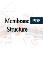 6 - Cell Biology - Membrane Structure-1