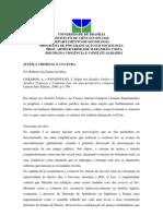 Resenha julgar nos Estados Unidos e na França - Roberto dos Santos da Silva