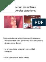 Exodoncia-Infantil