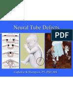 Neural Tube Defect Powerpoint 2004
