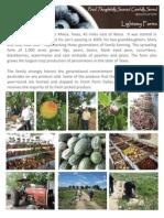 Local Food Vendors