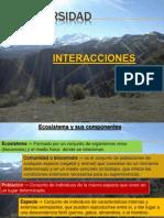 Relaciones en los ecosistemas-7°básico