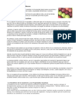 Propiedades y Beneficios de La Manzana, ZANAHORIA , MANZANILLA
