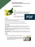 Plan de Accion (1)