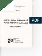 Caiet de Munca Independenta pt activitatile matematice-grupa Pregatitoare