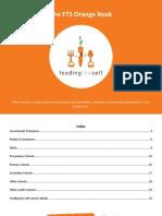The FTS Orange Book (Durban sustainability book)
