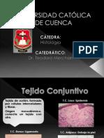 Histología_Tejido Conjuntivo