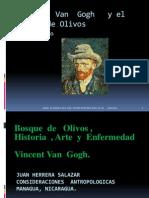 Van Gogh Bosque de Olivos