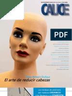 cauce5_2011