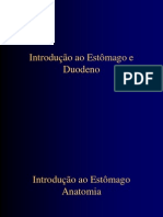 introduoaestmago-100607131143-phpapp01