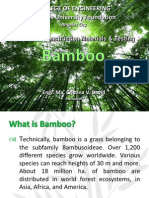 Bamboo 2012
