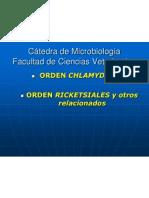 Chlamydia Rickettisia