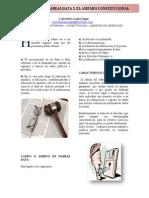 RELACIÓN DEL HABEAS DATA Y EL AMPARO CONSTITUCIONAL