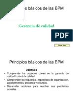 Principios Basicos BPM