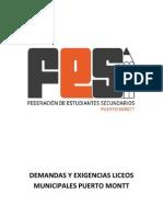 Demandas y Exigencias Liceos Municipales Puerto Montt