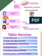 Histologia (s.nervioso)