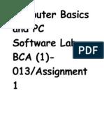 Computer Basics and PC Software Lab BCA
