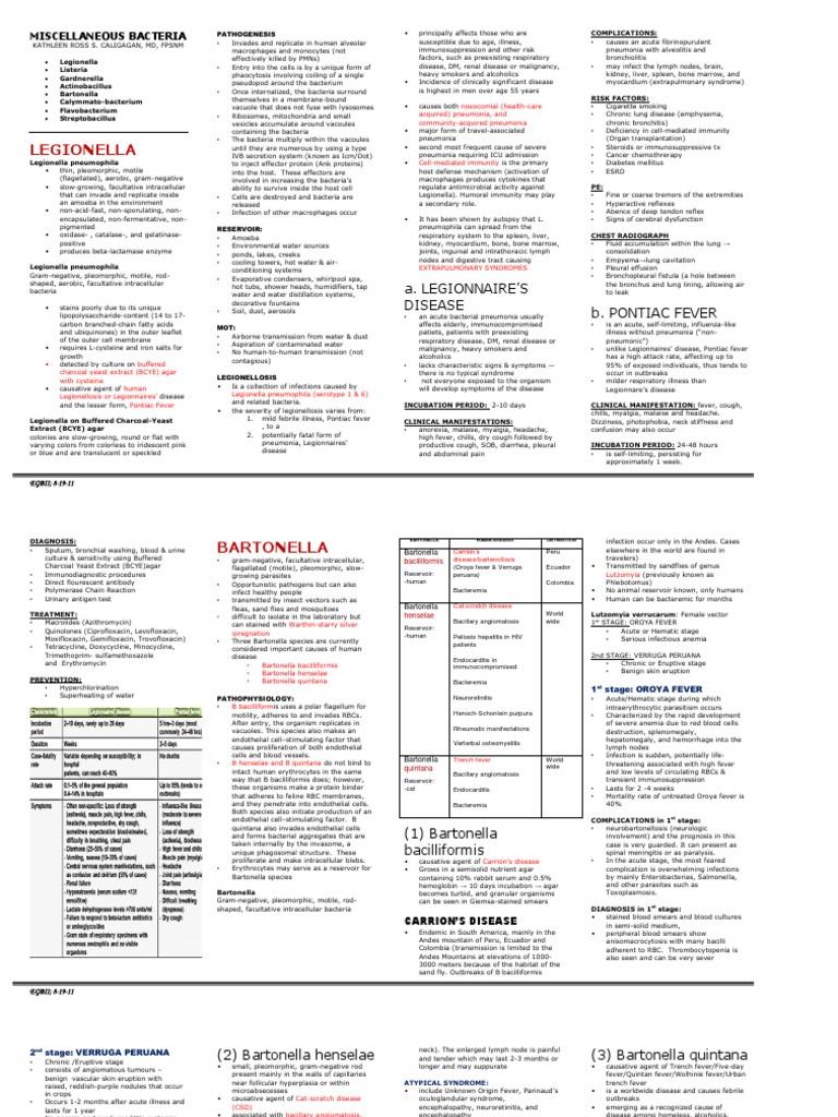MISC Bacteria (Legionella, Listeria, Gardnerella