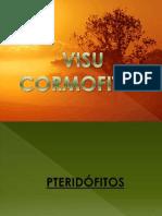 Visu Cormofitos