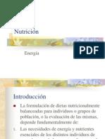 Nutrición energia 1
