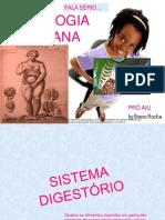 Fisiologia Humana - resumo