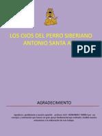 diapositivasdelosojosdeperrosiberiano1
